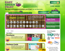 screenshot of homepage of easygreenprint.com